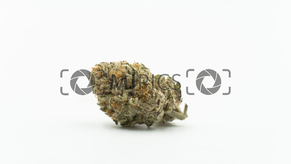 Girl Scout Cookies x Sour Diesel 10000785 download
