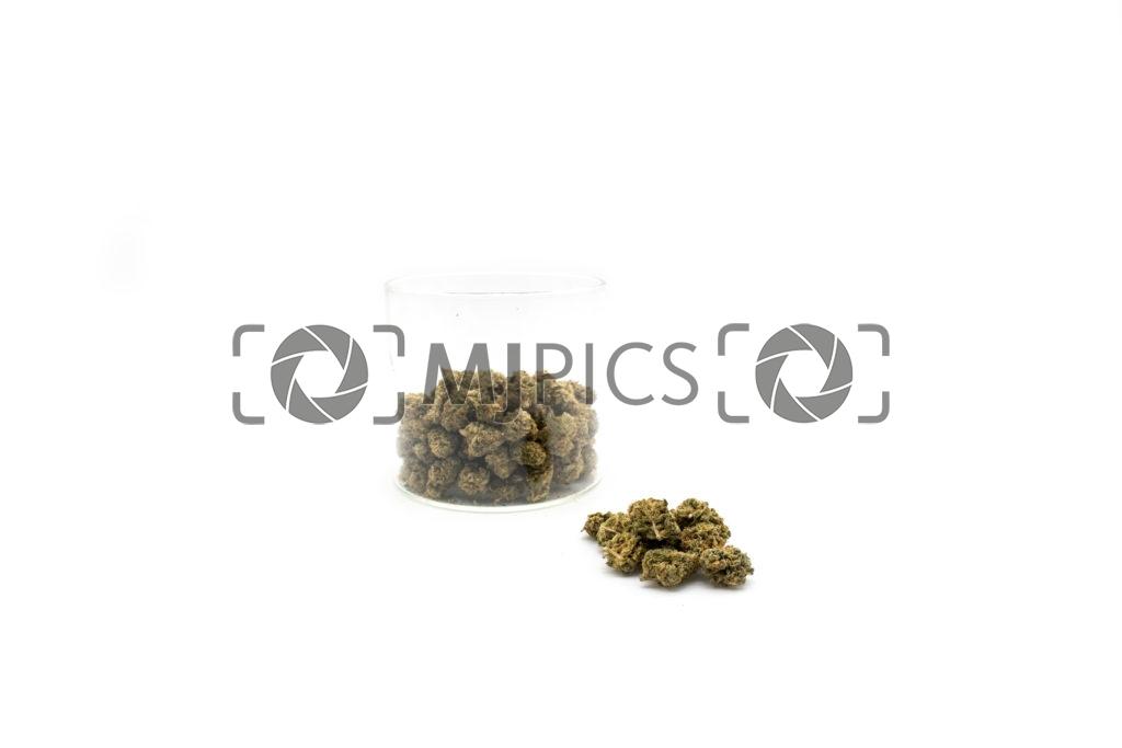 Lemon Mints 10001456