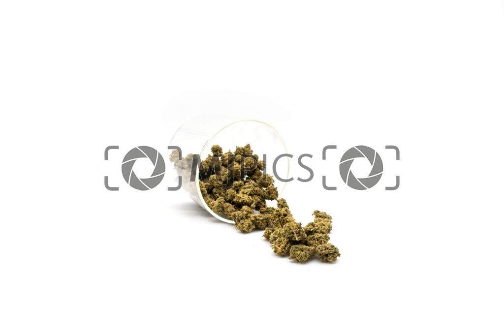 Lemon Mints 10001458