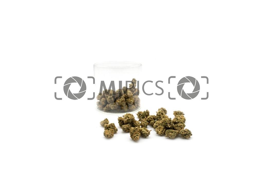Lemon Mints 10001459
