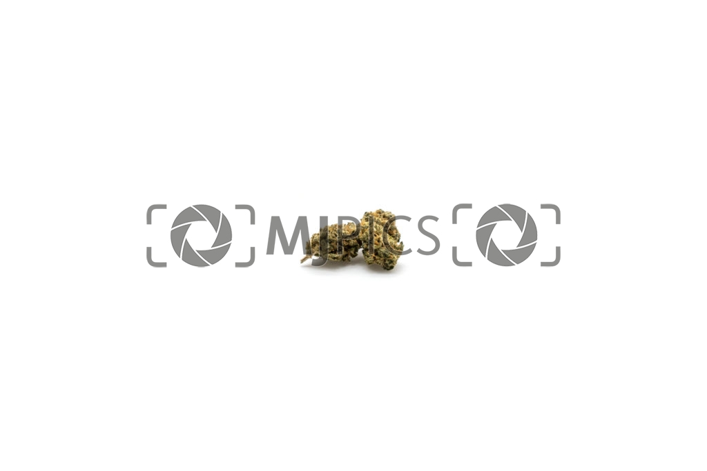 Lemon Mints 10001461